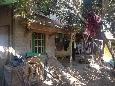 BTPN Tasik 1. Tanah + bangunan luas 129 m2 di Blok Kepuh, RT 001/008, Ds.Majasari, Kec.Cibiuk, Kab.Garut