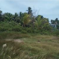 1 bidang tanah kosong luas 1.013 m2 di Kelurahan Samkai, Distrik Merauke, Kabupaten Merauke