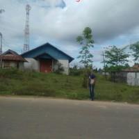 1 bidang tanah luas 1.987 m2 berikut gudang di Kampung Persatuan, Distrik Mandobo, Kabupaten Boven Digoel