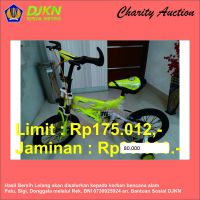 Charity Auction KPKNL Metro (15): Sepeda Anak