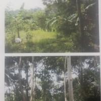 BPR tRISURYA (2): Tanah seluas 14.580 M2 sesuai dengan SHM No. 00150 terletak di Desa Karya Tunggal, Kec. Katibung, Lampung Selatan