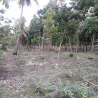 *KPP* sebidang tanah SHM No. 562 luas 18.820 m2 di Ds.Labuhan Lombok,Kec.Pringgarata,Kab.Lombok Timur