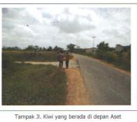 MDR : 5 bid tanah seluas 183.590 m2 SHM No. 270,272,274, SHGB No.802,278 di Jl. Kiwi, Ds. Tebang Kacang, Kab. Kubu Raya, Kalimantan Barat