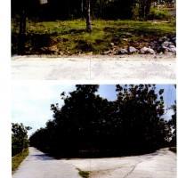 TRIHASTA||24_01||. 1. tanah SHM No.291 Luas +/- 575 m2 di Desa Genengduwur, Gemolong, Sragen