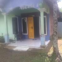 Lelang Eksekusi permohonan PT Bank BTPN, objek lelang : Sebidang tanah dan bangunan, luas tanah 209 m2 (SHM 544) di Reban, Batang