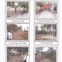 Lelang Eksekusi permohonan PT Bank Mandiri Tbk. : tanah luas 10.450 m2 (SHM No. 232) di Pandansari, Batang