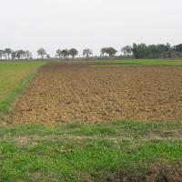 PD BKK Lasem: Tanah SHM No. 00299 luas 5.024 m2, di Desa Tlogorejo, Kec. Jakenan, Kab. Pati