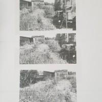 KPP Demak: sebidang tanah SHM No.3956 lt.103 m2, di Kel. Banjardowo, Kec. Genuk, Kota Semarang