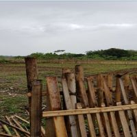 Sebidang tanah sesuai SHM No.01924, Luas 1.603 m², terletak di Kel. Pa'bentengang, Kec. Marusu, Kab. Maros (BRI A. Yani)