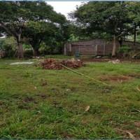 sebidang tanah SHM No. 00659/Pa'bentengang, Luas 725 m2, terletak di  Kel. Pa'bentengang, Kec. Marusu, Kab. Maros (BRI A. Yani)