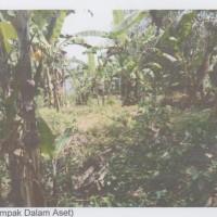 2 (dua) bidang tanah, SHM No. 4053, luas 680m2 dan SHM No. 4105 luas 200m2, di Desa Nyitdah, Kec. Kediri, Tabanan (Mandiri)