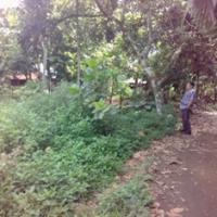 [BPR GOLI] 5.Sebidang tanah perumahan seluas 253 M2 SHM No 00539, di Kel. Balai Nan Tuo Kec. Payakumbuh Timur Kota Payakumbuh