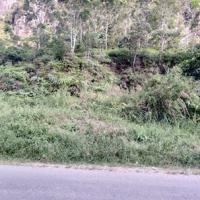 [BPR GOLI] 2.Sebidang tanah pertanian seluas 1.200 M2 SHM No 381, di Nag. Solok Bio Bio Kec. Harau Kab. Lima Puluh Kota