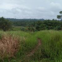1 bidang tanah kosong, SHM No. 779  luas 9.000 m2 di Desa Aimas, Kec. Aimas, Kab. Sorong, Prov. Papua Barat (d/h Papua)