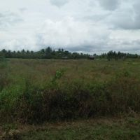 1 bidang tanah kosong SHM No. 894 luas 7.500 m2 yang terletak di Desa Malawali Kec Aimas Kab Sorong Prov Papua Barat