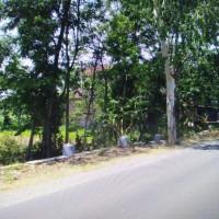 BNI - 2. Sebidang tanah di Ds/Kel Kadipaten Kec Babadan Kab Ponorogo sesuai SHM No. 1046 Luas 463 m2