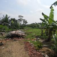 BRI Karanganyar: 1 Paket Tanah SHM 984, LT: 571 m2, dan SHM 1046, LT 360 m2 Desa Musuk, Kec Sambirejo, Kab Sragen