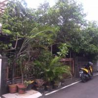 BRI Artha Gading-SHM No. 2993 seluas 88 m2 terletak di Jalan Aren VI Blok K6 No. 33 Kel. Pondok Kelapa Jakarta Timur