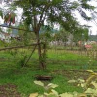 """""""BRI Takengon"""" Sebidang tanah seluas 851 M2 SHM No15 di Desa Gunung Belohen, Kec. Kebayakan, Kab. Aceh Tengah"""