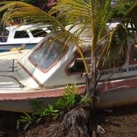 1 (satu) unit Speed Boat/Motor Tempel merk Yamaha 2x40 PK, lokasi di Kaimana, milik Balai Konservasi Sumber Daya Alam Papua Barat