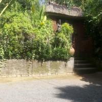 4 (empat) Bidang Tanah Dijual Dalam 1 (satu) Paket Berikut Bangunan, luas total 5.100m2 di Desa Buahan Kaja, Kec. Payangan, Kab. Gianyar
