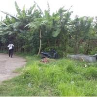 PNM Cab.Dps : Sebidang Tanah kosong SHM  No. 961/luas 280M² terletak di Kelurahan Anturan,Kec/Kab Buleleng