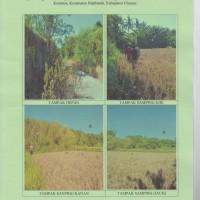 1 (satu) bidang tanah, SHM No. 309, luas 6440m2, di Desa Keramas, Kec. Blahbatuh, Kab. Gianyar (BPD)