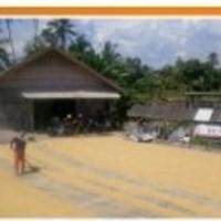 BRI Singaparna 4a. T/B pabrik huler, LT 403 m2 di Blok Jl.Bojong, Ds.Ciawang, Kec.Leuwisari, Kab.Tasikmalaya