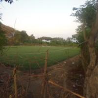 Lelang Eksekusi Hak Tanggungan PT BNI (Persero) Tbk. Cabang Bima berupa Tanah Kosong seluas 18.200 di Desa Poja, Kab. Sape, Kab. Bima