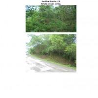 1 (satu) bidang tanah luas 1.500 m2 sesuai SHM Nomor 128 terletak di Kab. Sorong Selatan, Provinsi Papua Barat