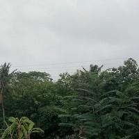 Mandiri Taspen (19-06)2b : Sebidang Tanah sesuai SHM No. 277 luas 4300 m2 terletak di Ds. Dencarik, Kec. Banjar, Kab. Buleleng