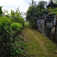Mandiri Taspen (19-06)3 : Sebidang Tanah sesuai SHM No. 2232 luas 300 m2 terletak di Ds. Pohsanten, Kec. Mendoyo, Kab. Jembrana