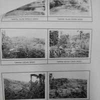 Mandiri Taspen (27-06)1a : 2 bidang Tanah SHM No. 48, 49 m2 terletak di Ds. Bestala, Kec. Seririt, Kab. Buleleng (dijual paket)