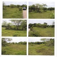 BPR PITOBY 5 b: 1 (satu) bidang tanah, SHM No.466,  luas 5.095 m2 , terletak di Desa Kuanheum, Kec.Amabi Oefeto, Kab.Kupang