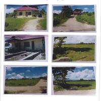 BPR PITOBY 1: 1 (satu) bidang tanah dan bangunan SHM No.1180 luas 19.715 m2 , terletak di Kel.Oesao, Kec.Kupang Timur, Kab.Kupang
