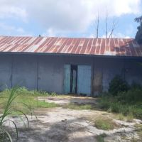 (BRI Sinjai) tanah (SHM No.17) berikut bangunan, Luas tanah 1.423 m2, di Desa Nusa, Kec. Kahu, Kab. Bone