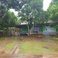 1 bidang tanah luas 973 m2 berikut rumah tinggal di Desa Kuprik, Kecamatan Merauke Kabupaten Merauke