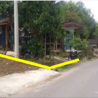 [PNM] 2. Sebidang Tanah luas 890 M² & Bangunan luas 39 M² SHM No. 729, di Nagari Aua Kuniang Kec Pasaman Kab Pasaman Barat