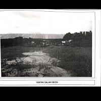 Satu paket tanah dan bangunan terdiri atas 10 bidang tanah SHGB total luas 29.144 M2 terletak di jl.Raya Wringinanom Gresik
