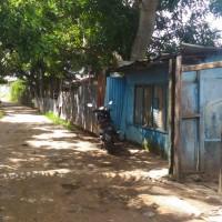 1 bidang tanah luas 300 m2 berikut rumah tinggal di Kelurahan Mandala, Distrik Merauke, Kabupaten Merauke