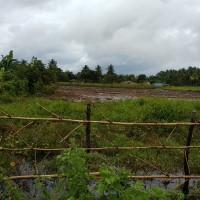 1 bidang tanah kosong luas 2.000 m2 di Desa/Kelurahan Kumbe, Kecamatan Kurik, Kabupaten Merauke