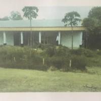 Sinarmas (4): Tanah sesuai SHM No 745 dengan luas tanah 3068 m2 berikut bangunan di  Gerning  Tegineneng  Pesawaran