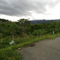 1 (satu) bidang tanah kebun seluas ± 9.112 m2 terletak di  Desa/Kelurahan Kamumu, Kecamatan Luwuk, Kabupaten Banggai BRI LUWUK