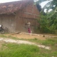 PT BRI Demak: Tanah&Bangunan SHM No. 356 luas 816 m2, di Desa Balerejo, Kec. Dempet, Kab. Demak