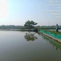 PT BRI Demak; Tanah SHM No. 293 luas 1.312 m2, di Desa Sidorejo, Kec. Sayung, Kab. Demak