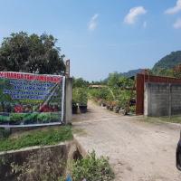 BSM BNA: Tanah dan bangunan terletak di Desa Lam Geu Eu, Kec.Peukan Bada, Kab.Aceh Besar, Luas Tanah 15.417 m2