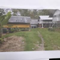 BRI Majenang: Sebidang tanah, SHM No. 259 luas 8.584 m², berikut bangunan di Desa Cinangsi Kecamatan Gandrungmangu Kabupaten Cilacap