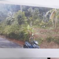 BRI Majenang: Sebidang tanah, SHM No. 94 luas 1.873 m², di Desa Panulisan Timur Kecamatan Dayeuhluhur Kabupaten Cilacap