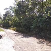 Lelang Eksekusi permohonan PT Bank BRI Tbk., Cab Batang : tanah luas 1.354 m2 (SHM 400) di Candirejo, Bawang, Batang