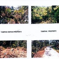Bjbs Tasik 24. Tanah luas 2539 m2  di Blok Guha Lanang, Ds.Setiawaras, Kec.Cibalong, Kab.Tasikmalaya